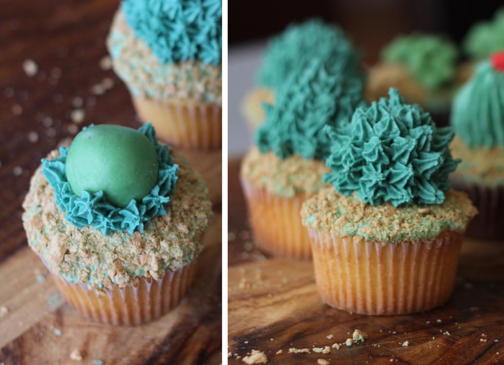 Succulent-Cactus-Cupcakes-11